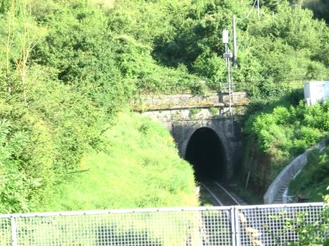 Montarioso Tunnel northern portal