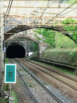 Tunnel Murta
