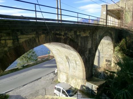Pedfer-Vedrignanino Tunnel southern portal and Valle Vacchera Bridge