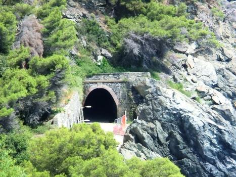 Tunnel Pescatori