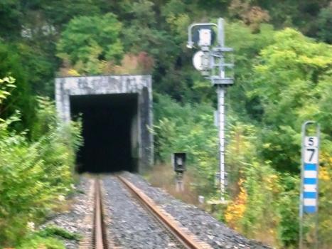 Tunnel Piazza al Serchio