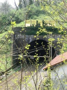 Tunnel Riccò