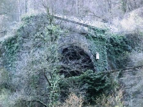Tunnel Rio Confinale