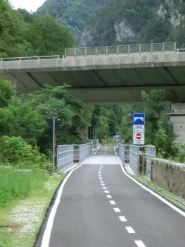 Pont sur le Rio Osvaldo