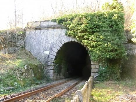 Túnel de Salto del Cavallo