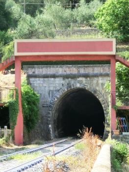 Tunnel Sardinesca