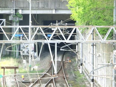Tunnel Termine d'Arcola