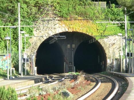 Tunnel Vedetta-Bricchetto