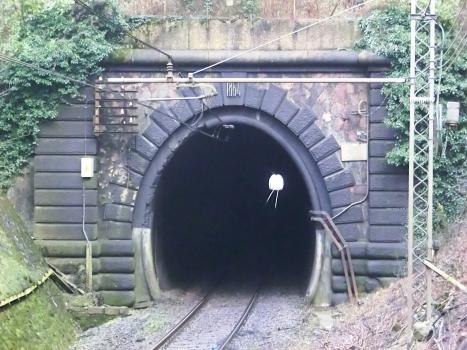 Vergiate even track Tunnel eastern portal