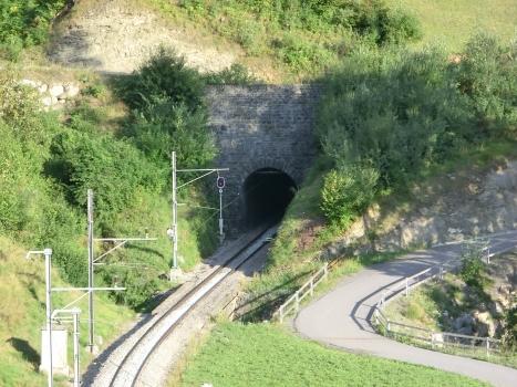 Tunnel d'Alvaschein