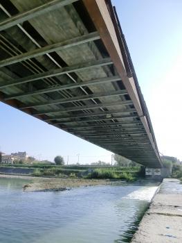 Ponte dello Scout