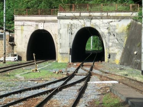 Tunnel Acqua Acetosa