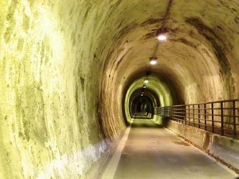 Sant'Andrea Tunnel