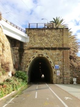 Tunnel Daino