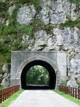 Tunnel de Chiout Micheli IV