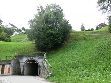 Mompé-Medel Tunnel northern portal