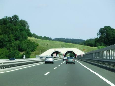 Tunnel Malečnik