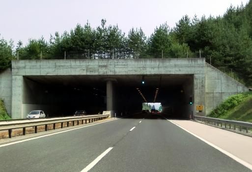 Tunnel Strmec