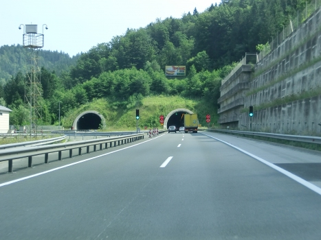 Tunnel Trojane