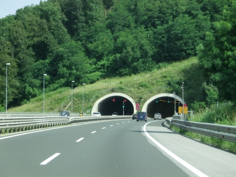 Tunnel Vodole