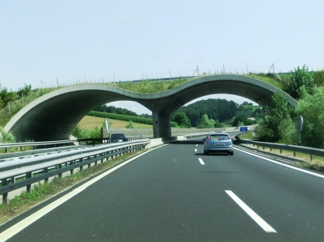 Brengova Ecoduct western portals