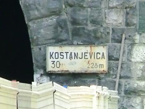 Kostanjevica I sign at northern portal