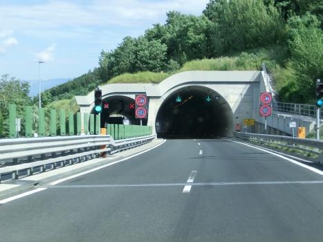 Rebernice 1 Tunnel eastern portals