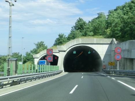 Rebernice 2 Tunnel eastern portals