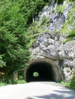 Tunnel de Mangart I