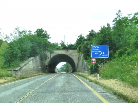 Tunnel Campodiegoli