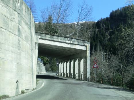 Tunnel Bosco Piotta II