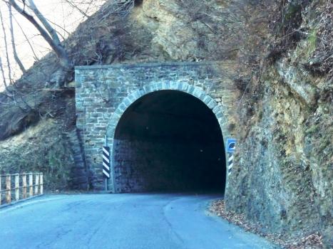 Tunnel Portone III