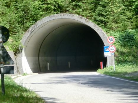 Tunnel Volt da l'aghe