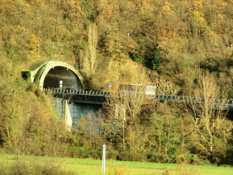 Cardetole Tunnel western portal