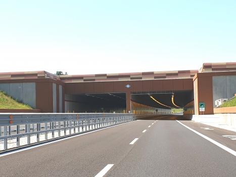 Tunnel de Bassi