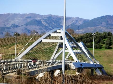 Pont de la SS69 sur l'Arno