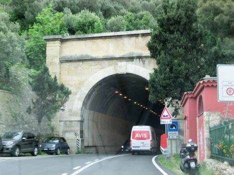 Tunnel Varigotti