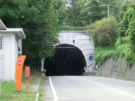 Tunnel de Pino