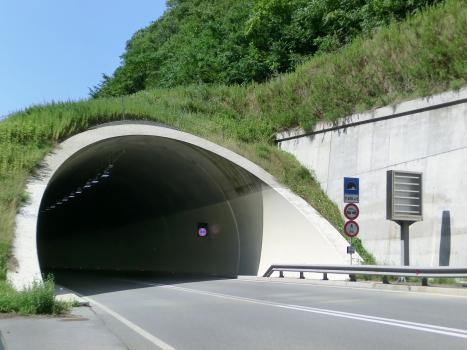 Tunnel d'Atzwang