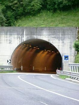 Tunnel de Forte