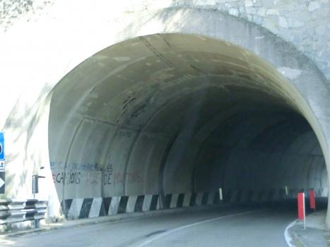 Tunnel San Michele