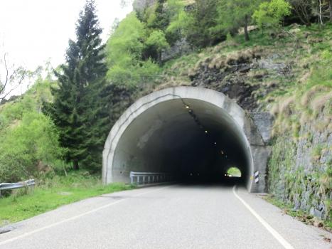 Tunnel Bielmonte II