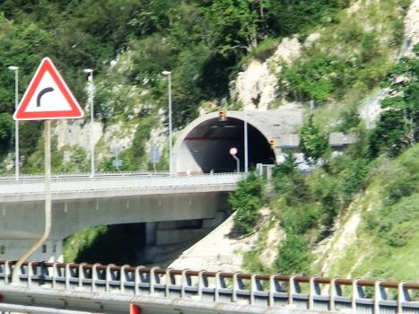 Cellina Viaduct and Fara Tunnel southern portal