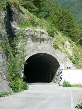 Tunnel de Monciaduda