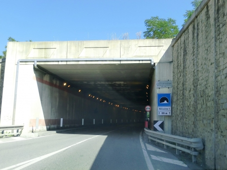 Tunnel de Millesimo 1