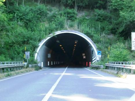 Fugona-Tunnel