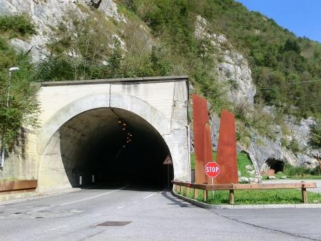 Capanne Tunnel and, on the right, Via Mala di Scalve 1 Tunnel southern portals