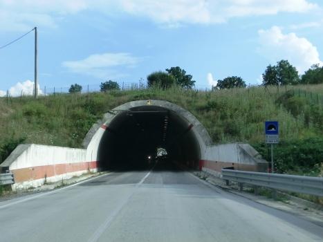 Tunnel Cesurelle