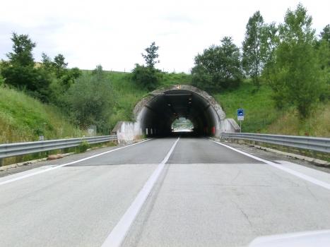 Costantini Tunnel northern portal