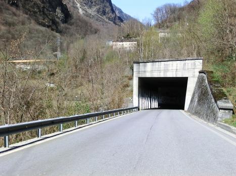 Tunnel Mescolana